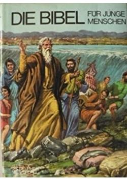 Die Bibel für junge Menschen