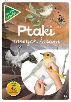 Poznaję i rysuję. Ptaki naszych lasów cz.2