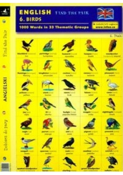 English. Find the pair. Birds