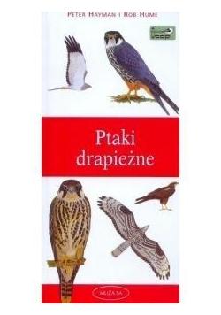 Ptaki drapieżne