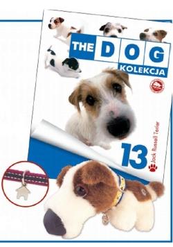 Dog Kolekcja 13 Jack Russell Terrier