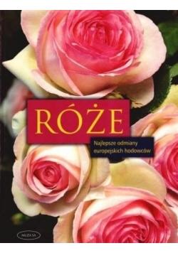 Róże. Najlepsze odmiany europejskich hodowców
