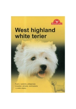 Pies na medal. West highland white terier