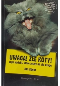 Uwaga! Złe koty! czyli kociaki,które zeszły na złą drogę.
