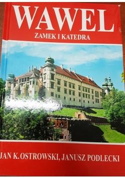 Wawel zamek i katedra