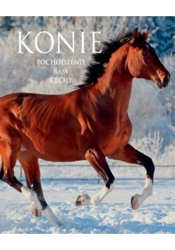 Konie. Pochodzenie. Rasy. Cechy
