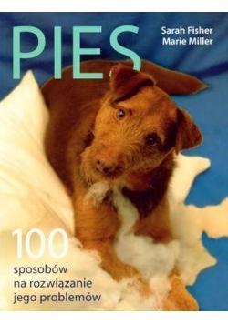Pies. 100 sposobów na rozwiązanie jego problemów
