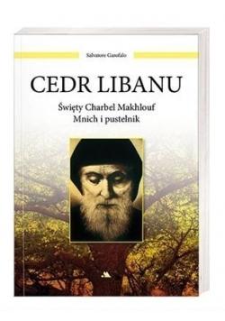 Cedr Libanu. Święty Charbel Makhlouf