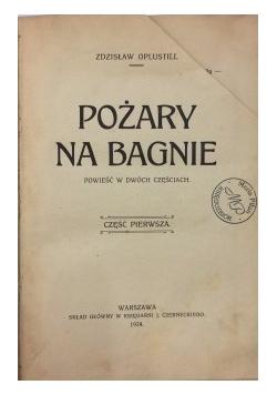 Pożary na bagnie - Powieść w dwóch częściach,1924 r.