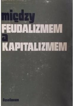 Między feudalizmem a kapitalizmem