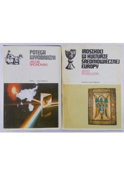 Potęga wyobraźni/ Iroszkoci w kulturze średniowiecznej Europy