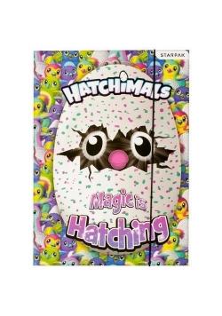 Teczka z gumką A4 Hatchimals