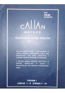 Teach each other english