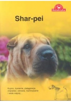 Pies na medal. Shar Pei