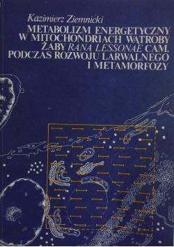 Metabolizm energetyczny w mitochondriach wątroby