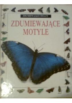 Zdumiewające motyle