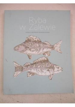 Ryba w Zalewie