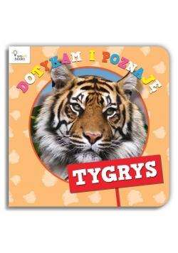 Dotykam i Poznaję. Tygrys