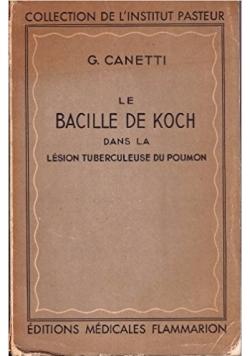 Le Bacille de koch , 1946 r.