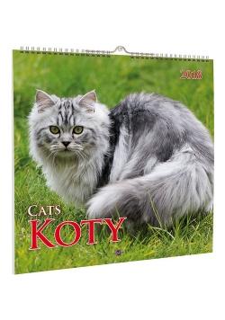 Kalendarz 2018 KD-21 Koty