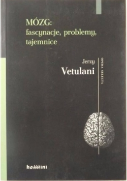 Mózg: fascynacje, problemy, tajemnice