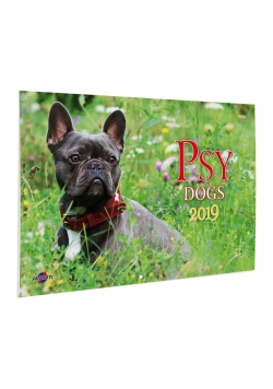 Kalendarz 2019 KA-2 Psy AVANTI