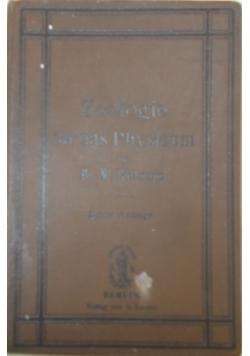 Zoologie fur das Physicum, 1903r