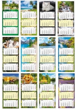 Kalendarz 2019 trójdzielny z płaską główką SB8 mix