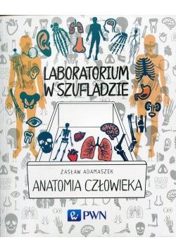 Laboratorium w szufladzie Anatomia człowieka
