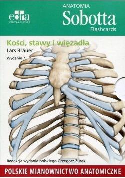 Anatomia Sobotta. Flashcards - Kości, stawy..pol.