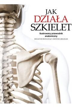 Jak działa szkielet