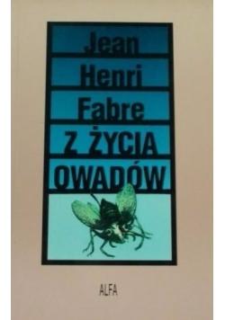 Z życia owadów