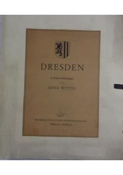 Dresden 6 Federzeichnungen