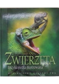 Zwierzęta. Encyklopedia ilustrowana