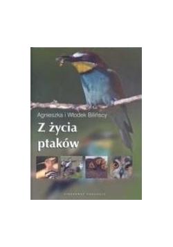 Z życia ptaków Videograf II